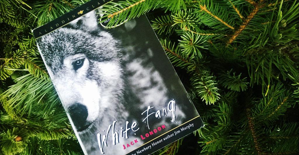 beli-očnjak-knjiga