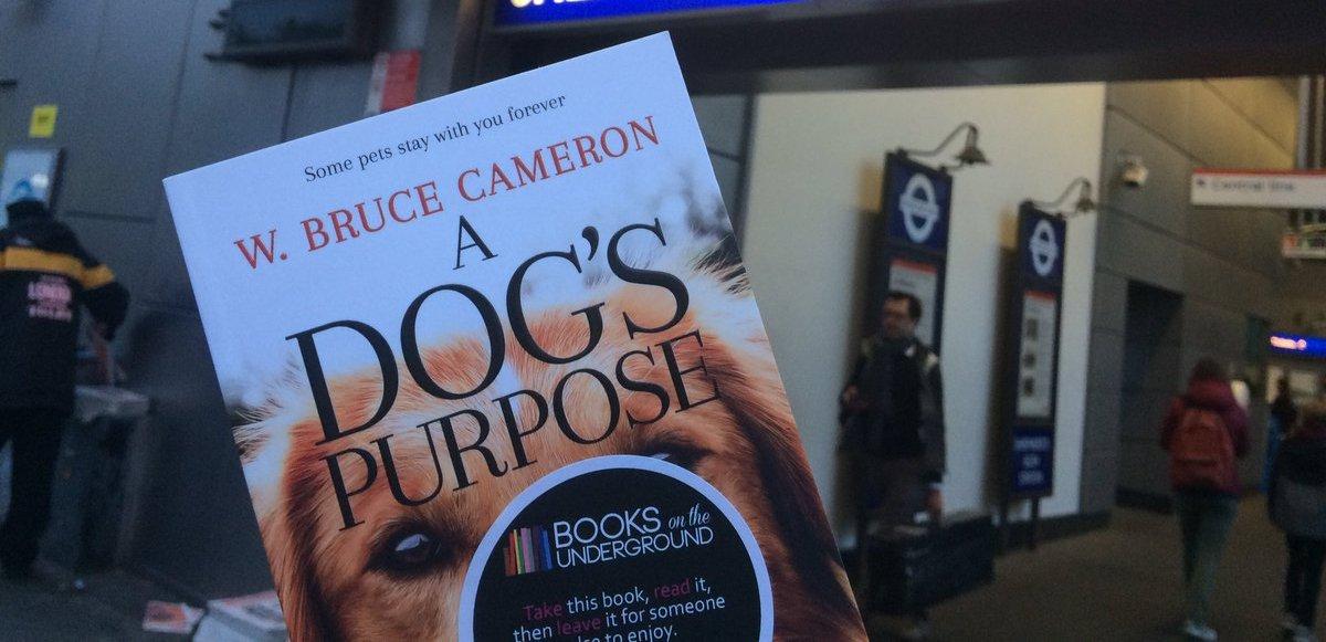 knjige-o-psima-dogs-purpose-knjiga