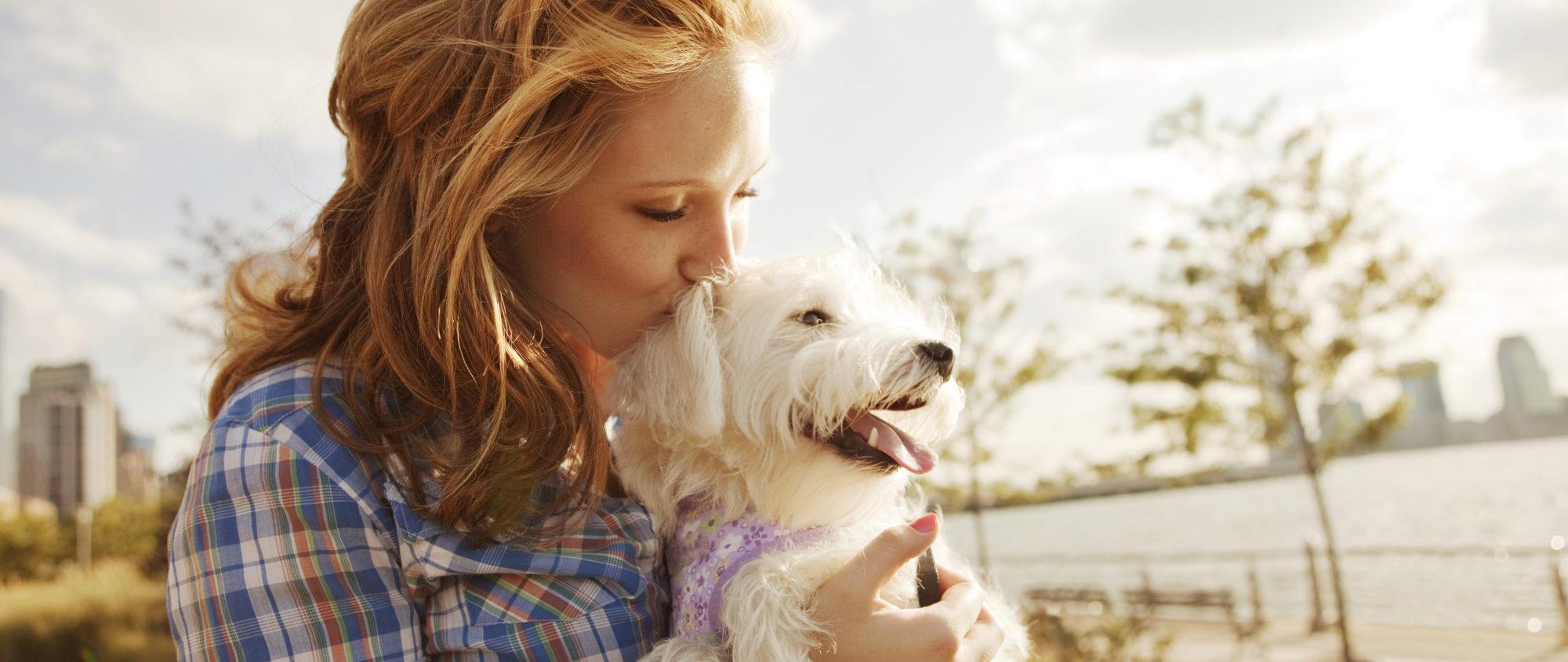 štene-psa-i-devojka-maltezer
