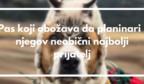 Pas koji obožava da planinari i njegov neobični najbolji prijatelj